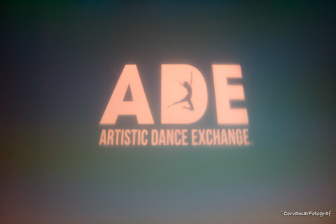 Artistic Dance Exchange Madrid  Fotos